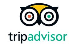 TripAdvisor_logo-250x150.jpg
